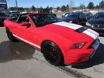 2010 Ford Shelby
