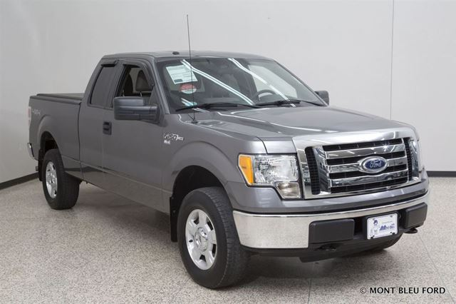 2010 ford f 150 xlt grey mont bleu ford for Miroir ford f 150