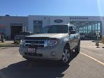 2008 Ford Escape XLT in Elmvale, Ontario