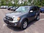 2010 Ford Escape XLT in St Catharines, Ontario