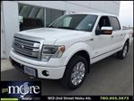 2014 Ford F-150 Platinum 4x4 Supercrew Full Load 3.5 Ecoboost and in Leduc, Alberta
