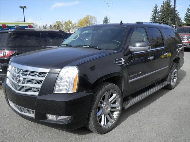 2010 cadillac escalade esv black cmp chevrolet buick gmc. Black Bedroom Furniture Sets. Home Design Ideas