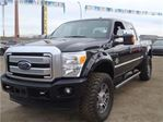 2015 Ford F-250 Platinum - Lifted Diesel - Everyone Approved in Edmonton, Alberta