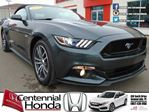 2015 Ford Mustang PLEASE CALL!!! in Summerside, Prince Edward Island