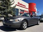 2004 Ford Mustang Base Deluxe RARE DROPTOP! in Gatineau, Quebec