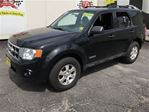 2008 Ford Escape XLT in Burlington, Ontario