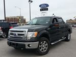 2014 Ford F-150 XLT in Richmond Hill, Ontario