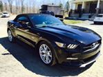 2015 Ford Mustang           in Mississauga, Ontario