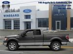 2014 Ford F-150 - in Caledonia, Ontario