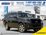 2010 Ford Expedition Limited in Lethbridge, Alberta