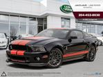 2013 Ford Shelby Shelby GT500 in Winnipeg, Manitoba