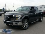 2016 Ford F-150 XLT in Port Perry, Ontario