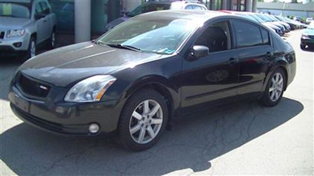 2005 nissan maxima 3 5 sl black gorruds auto group. Black Bedroom Furniture Sets. Home Design Ideas