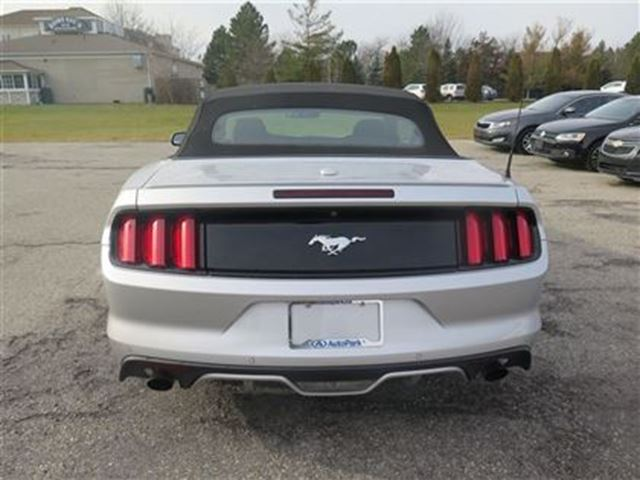 2015 ford mustang ecoboost premium navigation 310 hp twin turbo fonthill ontario used car. Black Bedroom Furniture Sets. Home Design Ideas