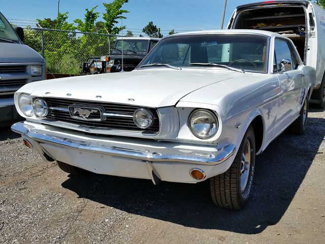 1966 FORD Mustang           in Bolton, Ontario