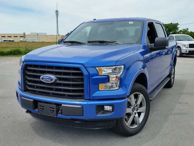 2016 ford f 150 xlt brand new full warranty blue taylor ford. Black Bedroom Furniture Sets. Home Design Ideas