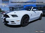 2013 Ford Mustang GT   Low KMS No Accident in Surrey, British Columbia
