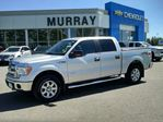 2014 Ford F-150 FX4 in Brandon, Manitoba