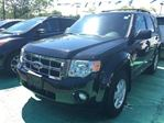 2009 Ford Escape XLT in Mississauga, Ontario