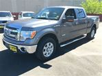 2013 Ford F-150 XLT, Crew Cab, Automatic,  Back Up Camera, 4*4 in Burlington, Ontario