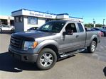 2010 Ford F-150 FX4 in Burlington, Ontario