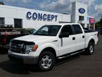 2009 Ford F-150 XLT in Georgetown, Ontario
