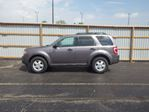 2010 Ford Escape XLT in Cayuga, Ontario