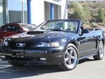2004 Ford Mustang 40th Anniversary | Automatic | Convertible | Mach Audio System | 6 Disc CD Player in Kamloops, British Columbia