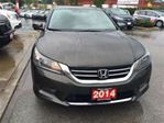 2014 Honda Accord EX-L - Extended Warranty! Leather! Accident free! in Maple Ridge, British Columbia