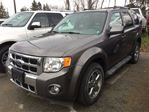 2009 Ford Escape Limited in Caledonia, Ontario