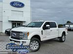 2017 Ford F-250 Platinum in Port Perry, Ontario