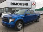 2014 Ford F-150           in Rimouski, Quebec