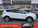2014 Ford Escape SE in St Catharines, Ontario