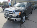 2014 Ford F-150 'GETS WORK DONE' LOADED XLT MODEL 5 PASSENGER 5 in Bradford, Ontario
