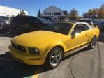 2006 Ford Mustang Convertible V6 Pony Pkg in Hagersville, Ontario