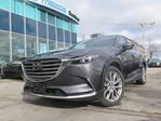 2016 Mazda CX-9 Signature Every Available Option in Toronto, Ontario