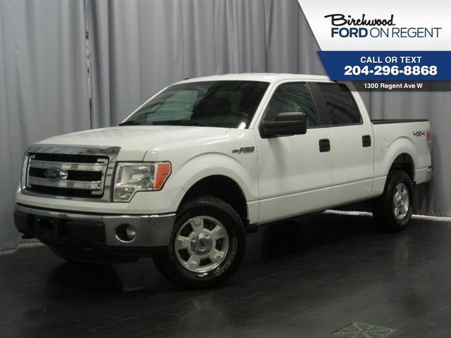 2014 ford f 150 xlt supercrew 4x4 5 0l v8 winnipeg. Black Bedroom Furniture Sets. Home Design Ideas