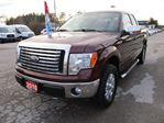 2010 Ford F-150 'GREAT VALUE' READY TO WORK XLT MODEL 6 PASSENG in Bradford, Ontario