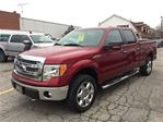 2013 Ford F-150 XLT in Hagersville, Ontario
