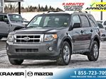 2011 Ford Escape XLT V6 4WD *JUST LANDED* in Calgary, Alberta