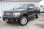 2009 Ford F-150 FX4 in Welland, Ontario