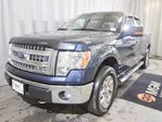 2014 Ford F-150 XLT in Red Deer, Alberta