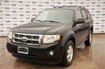 2012 Ford Escape XLT in Welland, Ontario