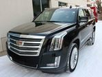 2015 Cadillac Escalade Platinum EVERY OPTION FINANCE AVAILABLE in Edmonton, Alberta
