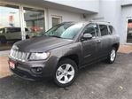 2016 Jeep Compass North REAR BACK UP CAMERA in Simcoe, Ontario