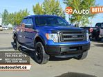2013 Ford F-150 XLT 4x4 SuperCrew Cab 5.5 ft. box 145 in. WB in Edmonton, Alberta