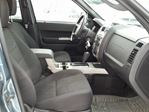 2010 Ford Escape XLT in Ottawa, Ontario image 11