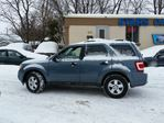 2010 Ford Escape XLT in Ottawa, Ontario image 2