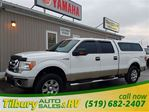2009 Ford F-150 XLT in Tilbury, Ontario