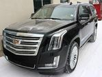 2015 Cadillac Escalade ESV Platinum EVERY OPTION ONE OWNER FINANCE AVAILABLE in Edmonton, Alberta